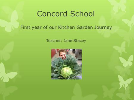 Concord School First year of our Kitchen Garden Journey Teacher: Jane Stacey.
