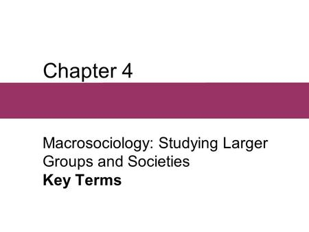 Chapter 4 Macrosociology: Studying Larger Groups and Societies Key Terms.
