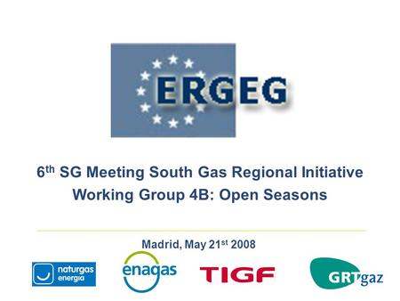 Madrid, May 21 st 2008 6 th SG Meeting South Gas Regional Initiative Working Group 4B: Open Seasons.