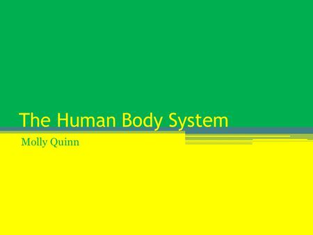 The Human Body System Molly Quinn. The Circulatory System The circularity system is made up of the heart, blood, blood vessels, veins, capillaries, and.