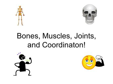 Bones, Muscles, Joints, and Coordinaton!. Bones! What are the three functions of bones? –Support –Movement –Protection.