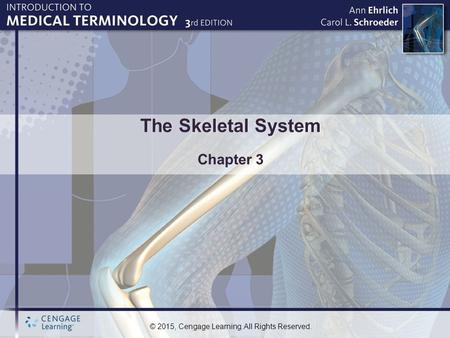 © 2015, Cengage Learning. All Rights Reserved. The Skeletal System Chapter 3.