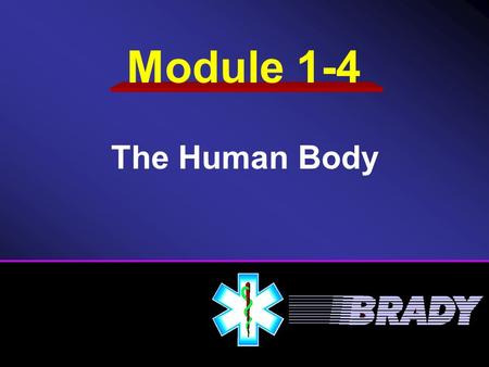 Module 1-4 The Human Body. Musculoskeletal System Circulatory System Skin Respiratory System Nervous System.