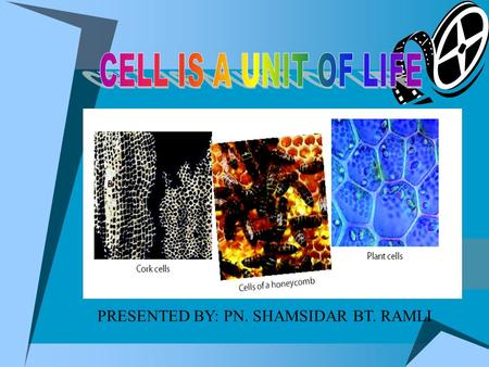 PRESENTED BY: PN. SHAMSIDAR BT. RAMLI INTRODUCTION ANIMAL CELLS PLANT CELLS MICROSCOPE QUESTIONS INTRODUCTION What is cell? 1. Cell is the basic unit.