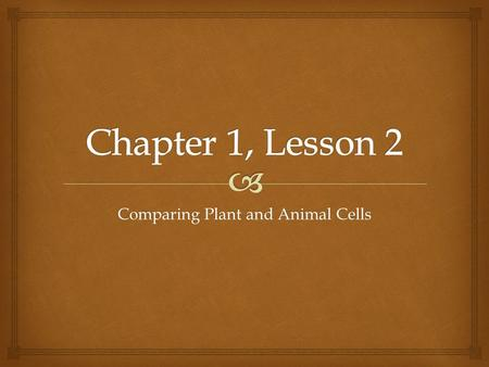 Comparing Plant and Animal Cells.   After this lesson, you should be able to:  Identify ways that plant and animal cells are alike and different. 