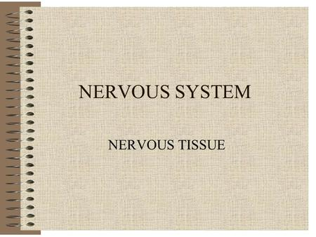NERVOUS SYSTEM NERVOUS TISSUE. Nervous System - General Control System Regulator of Homeostasis Electrical Impulses Rapid & Transient Effects.