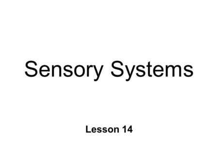Sensory Systems Lesson 14. Sensory Information n Detection of changes in environment l external or internal n 4 main functions l perception l control.