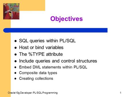 Oracle10g Developer: PL/SQL Programming1 Objectives SQL queries within PL/SQL Host or bind variables The %TYPE attribute Include queries and control structures.