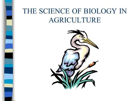 THE SCIENCE OF BIOLOGY IN AGRICULTURE. Science n A process through which nature is studied, discovered, and understood. n Biology is the study of life.