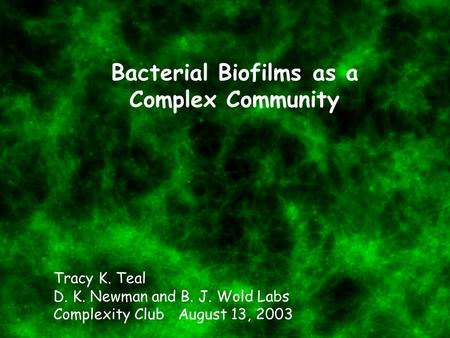 Bacterial Biofilms as a Complex Community Tracy K. Teal D. K. Newman and B. J. Wold Labs Complexity Club August 13, 2003.