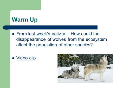 Warm Up From last week's activity – How could the disappearance of wolves from the ecosystem affect the population of other species? Video clip.