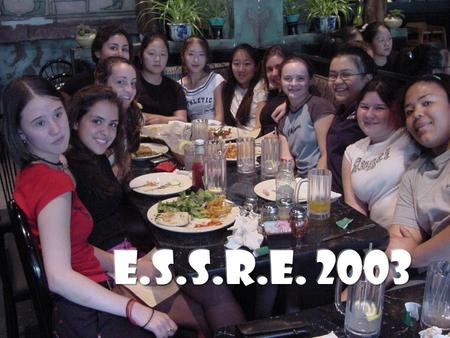 AHOY MATEYS! Welcome Aboard….. The Curious Adventures of The 2003 ESSRE Interns (aka the pirates of the back woods)