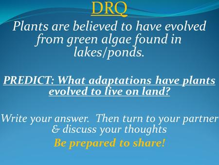 DRQ Plants are believed to have evolved from green algae found in lakes/ponds. PREDICT: What adaptations have plants evolved to live on land? Write your.