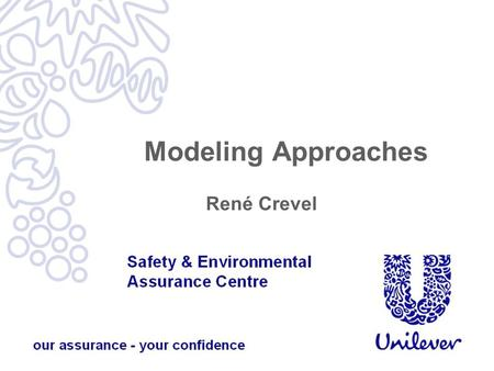 Modeling Approaches René Crevel.  Modeling approaches, including the hypoallergenicity model and the Bindslev- Jensen et al allergen model.  Data requirements.