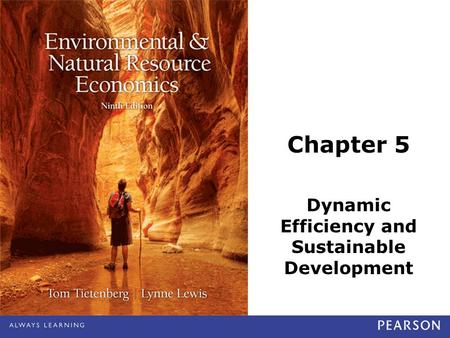 Chapter 5 Dynamic Efficiency and Sustainable Development.