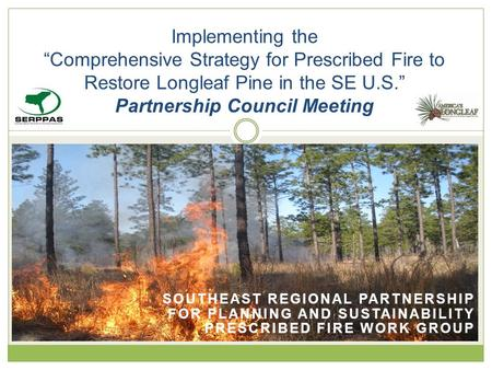 "SOUTHEAST REGIONAL PARTNERSHIP FOR PLANNING AND SUSTAINABILITY PRESCRIBED FIRE WORK GROUP Implementing the ""Comprehensive Strategy for Prescribed Fire."