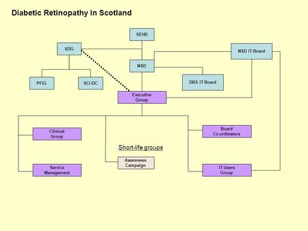 Diabetic Retinopathy in Scotland SEHD SDG NSD Executive Group DRS IT Board PFIG Clinical Group Service Management Awareness Campaign Board Co-ordinators.