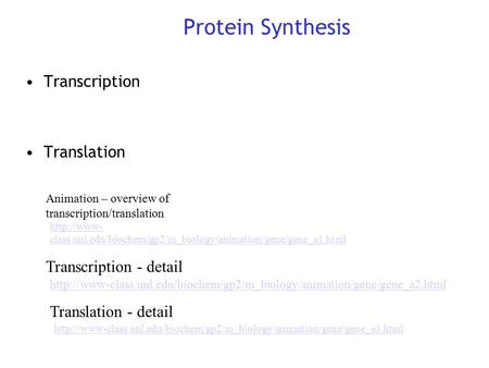 Protein Synthesis Transcription Translation Transcription - detail