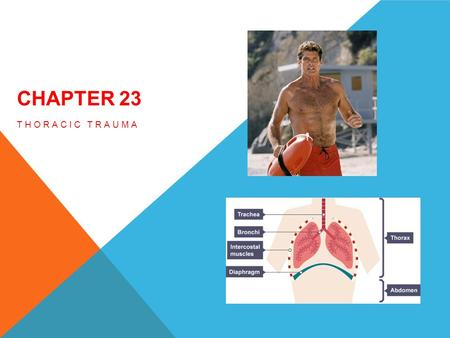 CHAPTER 23 THORACIC TRAUMA. OBJECTIVES 23.1 List the major anatomical structures of the thoracic cavity. 23.2 Describe the basic physiology of thoracic.