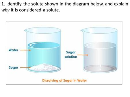 1. Identify the solute shown in the diagram below, and explain why it is considered a solute.