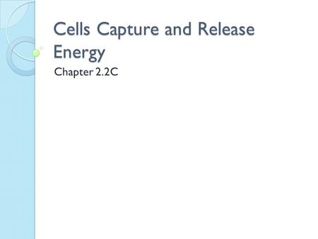 Cells Capture and Release Energy Chapter 2.2C. Warm-up—COPY!!! 1. The Sun provides much of the energy needed for ALL living things. How? 2. Describe the.