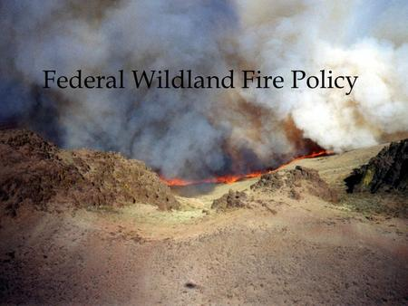 Federal Wildland Fire Policy 1976 - Prescribed Natural Fire 1988 - Yellowstone 1994 - South Canyon 1995 - Federal Fire Policy Review 1996 - PNF Escapes.