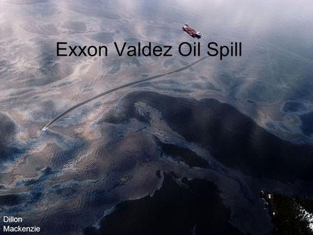 Exxon Valdez Oil Spill Dillon Mackenzie. How big was the spill? How big was the spill you ask? Well, the Exxon Valdez oil tanker hit Alaska's Bligh Reef.