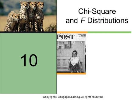 Copyright © Cengage Learning. All rights reserved. Chi-Square and F Distributions 10.