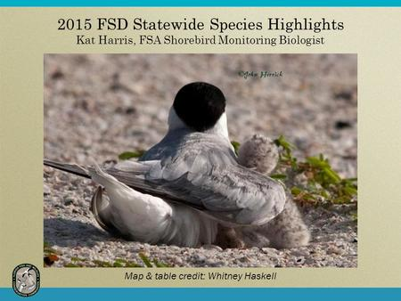 2015 FSD Statewide Species Highlights Kat Harris, FSA Shorebird Monitoring Biologist Map & table credit: Whitney Haskell.