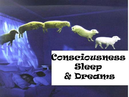 Consciousness Sleep & Dreams.
