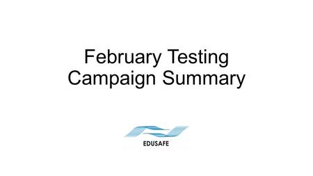 February Testing Campaign Summary. Disclaimer This presentation is based on the reports of the testing campaign and focuses on the problems arisen during.
