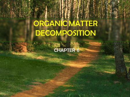 ORGANIC MATTER DECOMPOSITION CHAPTER 6. OBJECTIVES Process of organic matter decomposition Factors affecting organic matter decomposition Relate the activities.