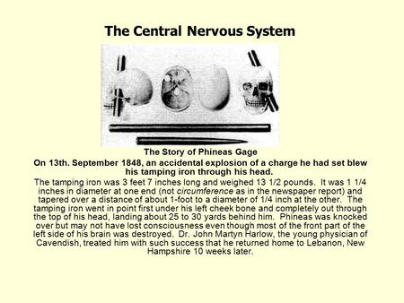 the central nervous system the story of phineas gage ppt download. Black Bedroom Furniture Sets. Home Design Ideas