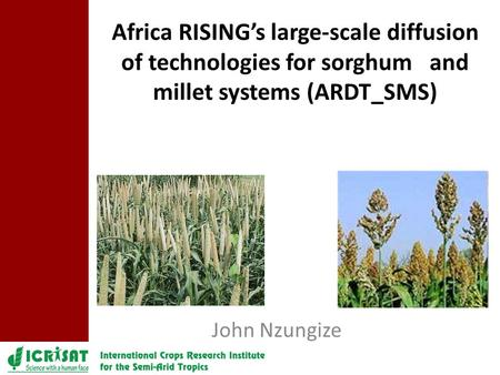 John Nzungize Africa RISING's large-scale diffusion of technologies for sorghum and millet systems (ARDT_SMS)