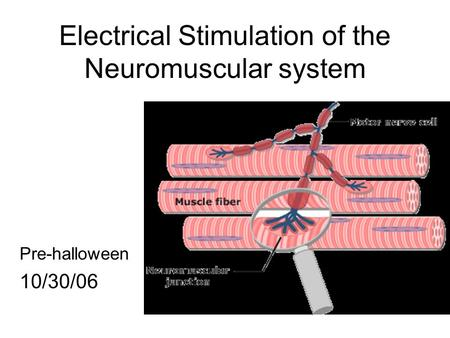 Electrical Stimulation of the Neuromuscular system Pre-halloween 10/30/06.