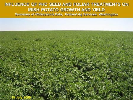 15 July 2009 INFLUENCE OF PHC SEED AND FOLIAR TREATMENTS ON IRISH POTATO GROWTH AND YIELD Summary of Rhizoctonia Data, Holland Ag Services, Washington.