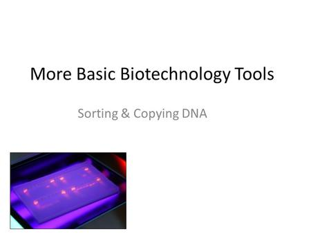 More Basic Biotechnology Tools Sorting & Copying DNA.