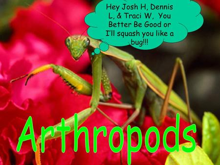 Hey Josh H, Dennis L, & Traci W, You Better Be Good or I'll squash you like a bug!!!