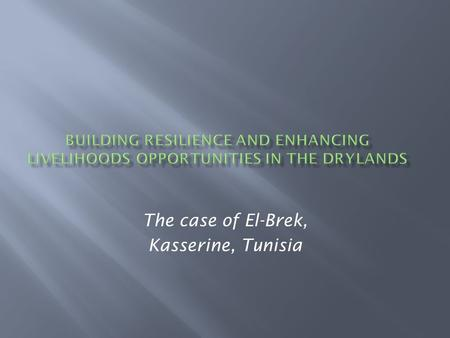 The case of El-Brek, Kasserine, Tunisia.  A marginal area affected by poverty and drought  Part of Tunisia's interior, which lags behind the more prosperous.