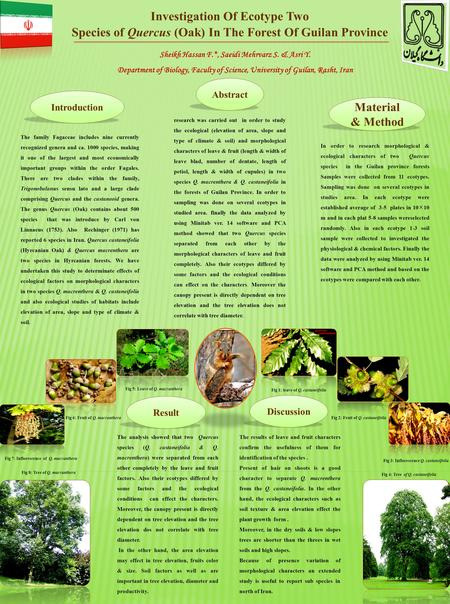 Investigation Of Ecotype Two Species of Quercus (Oak) In The Forest Of Guilan Province Abstract research was carried out in order to study the ecological.
