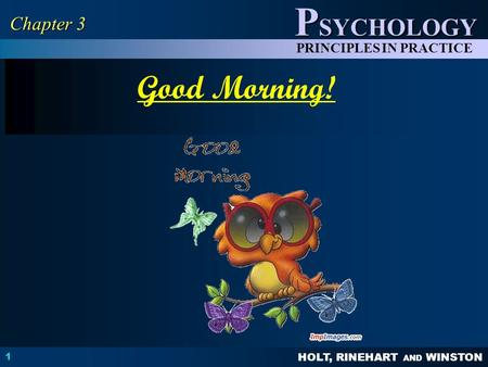 HOLT, RINEHART AND WINSTON P SYCHOLOGY PRINCIPLES IN PRACTICE 1 Chapter 3 Good Morning!