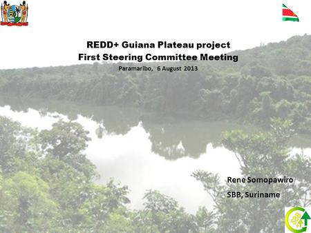 REDD+ Guiana Plateau project First Steering Committee Meeting Paramaribo, 6 August 2013 Rene Somopawiro SBB, Suriname.