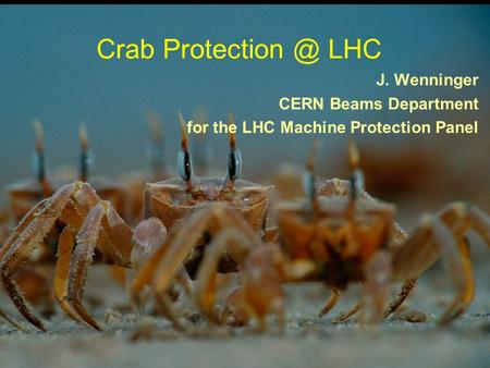 1 CC & MP - CC10 - CERN 16.12.2010 Crab LHC J. Wenninger CERN Beams Department for the LHC Machine Protection Panel.