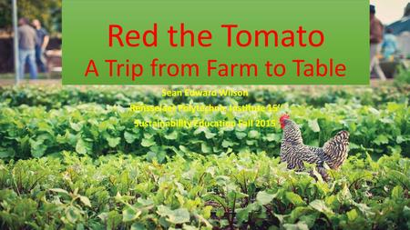 Red the Tomato A Trip from Farm to Table Sean Edward Wilson Rensselaer Polytechnic Institute 15' Sustainability Education Fall 2015.