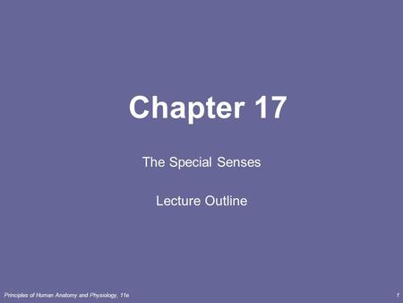 Principles of Human <strong>Anatomy</strong> <strong>and</strong> <strong>Physiology</strong>, 11e1 <strong>Chapter</strong> 17 The Special Senses Lecture Outline.