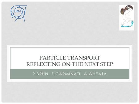 PARTICLE TRANSPORT REFLECTING ON THE NEXT STEP R.BRUN, F.CARMINATI, A.GHEATA 1.