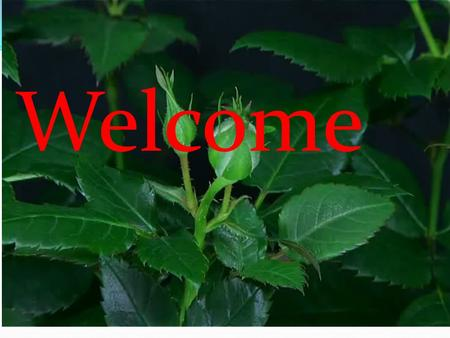 Welcome. Class : Seven Subject : English 2 nd paper Time : 40 minutes Date : 17/01/12 Introduction : Mafuza Khatun Assistant computer Teacher Rayermohol.