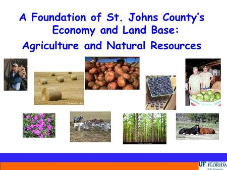 A Foundation of St. Johns County's Economy and Land Base: Agriculture and Natural Resources.