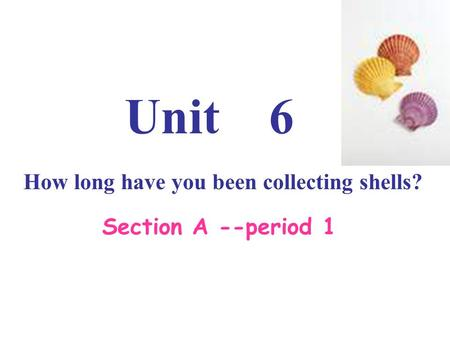 Unit 6 How long have you been collecting shells? Section A --period 1.