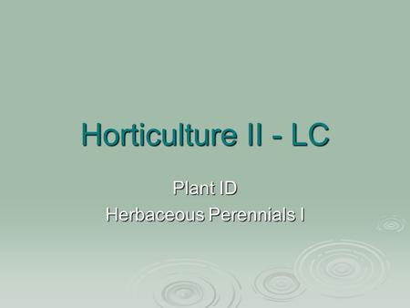 Horticulture II - LC Plant ID Herbaceous Perennials I.